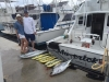 Maverick Sportfishing