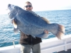 Reef Encounters Fishing Charters