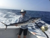Hooked-Up Sportfishing