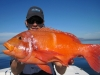 Big Blue Sport Fishing Charters