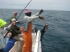 Fishing Tours Namibia