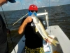 Cancun Light Tackle and fly fishing