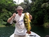 Panama Fishing & Catching