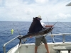 Sailfishbay Surf & Big Game Fishing Lodge