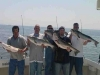 Reel Diamond Fishing Charters