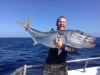In Pursuit Fishing Charters