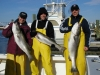 Fish Tale Charters