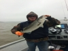 Little Jon's Texoma Striper Guide Service