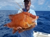 Hot Ticket Fishing Charters