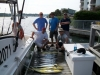 Offshore Account Sportfishing Charters