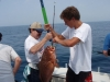 Reel Deep Fishing Charters