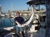 Maine River & Sea Charters