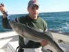 Cape Cod Sport Fishing