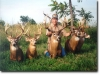Missouri's Grand River Outfitters and Guide Service