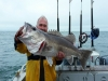 Rodfather Fishing Charters Kaikoura