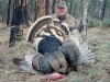 Arizona Guided Hunts