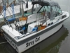 Stray Cat Fishing Charters