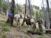 Allred's Adventures, L.L.C. - Sawtooth Wilderness Outfitters