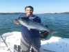 Striper Quest Guide Service