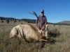 Beaverhead Outfitters