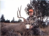 Wyoming Edge Outfitters