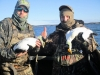 Maine Seaduck Guide Service