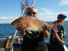 Asterix Fishing Charters