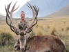 Glendeer Trophy Hunting New Zealand