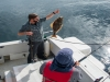 Alaska Wilderness Charters