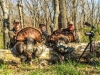 Hickory Creek Outfitters LLC