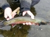 Alaska Fly Fishing Tours