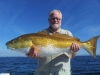 Island Life beach rentals and Fishing Charters