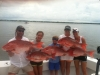 Miss Brianna Fishing Charters