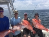 Southern Drawl Charters