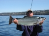 Big King Salmon Charters