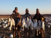 Snow Goose Hunting Outfitter and Guide