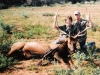 Outdoor Adventures Hunting & Guide Service