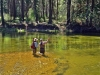 Yosemite Fly Fishing Guide