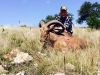 Hill Country Hunting Adventures, LLC