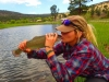 Fly Fish Arizona and Beyond