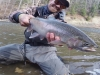 Ohio Steelhead Drifters