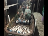 Southern Nights Bowfishing Charters