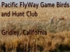 Pacific FlyWay Game Birds and Hunt Club