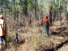 Southwind Sporting Clays and Quail Hunting