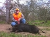 Texas Hog Hunts