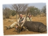 Byseewah Hunting Safaris