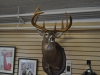 Upper Valley Outfitters