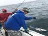 On The Fly Fishing Charters
